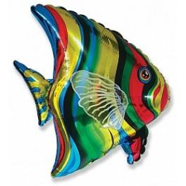Шар Тропическая рыба,